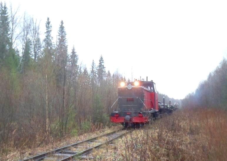 ТУ6А ведёт грузовой поезд.